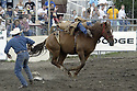 21 Aug 2003:  PRCA Bareback rodeo Hall of Famer Clint Corey competing at the Kitsap County fair and Stampede in Bremerton, Washington.