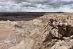 A man looks on the landscape of the Blue Mesa in Petrified Forest National Park in Arizona, United States of America.