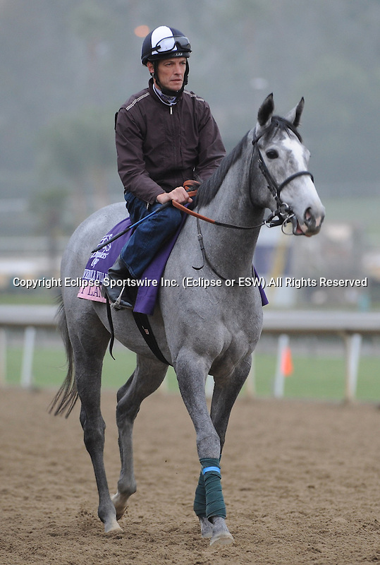 Sky Lantern, trained by Richard Hannon, exercises in preparation for the upcoming Breeders Cup at Santa Anita Park on November 1, 2012.