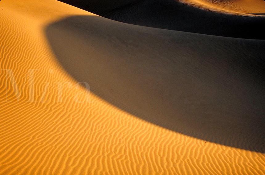 Sand dunes. Colorado USA Great Sand Dunes National Monument.