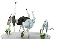 Detail of Origami model.<br /> Ostriches designed and folded by Paul Frasco<br /> Grass designed and folded by Delrosa Marshall