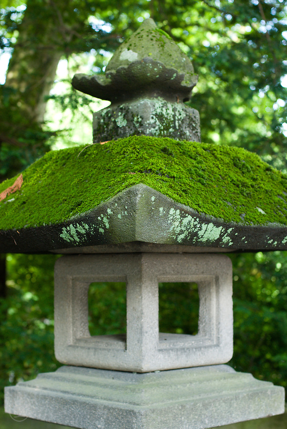 A moss covered stone lantern at the Akimiya Shrine, Suwa Taisha, Shimosuwa, Nagano, Japan. September 4 2008