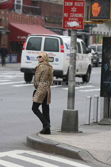 WWW.ACEPIXS.COM ** ** ** ....January 18, 2007, New York City. ....Ellen Barkin with an unidentified Male Friend goes to West Village Area having an apointment with a real estate Agent to visit a new Apartment in a brand new Building named Maison Pierre. ....Please byline: Philip Vaughan -- ACEPIXS.COM.. *** ***  ..Ace Pictures, Inc:  ..Philip Vaughan (212) 243-8787 or (646) 769 0430..e-mail: info@acepixs.com..web: http://www.acepixs.com