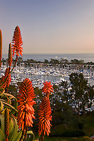 Dana Point Harbor Orange County, California At Sunset