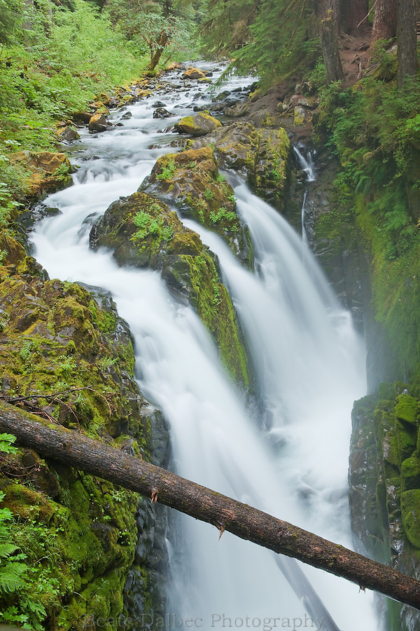 Sol Duc Waterfall, Olympic National Park, Washington State