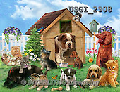 GIORDANO, CUTE ANIMALS, LUSTIGE TIERE, ANIMALITOS DIVERTIDOS, paintings+++++,USGI2908,#AC# ,dogs,cats,puzzles