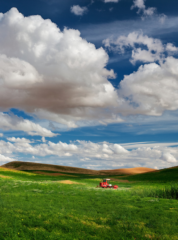 Lentil bean field and tractor. The Palouse, Washington