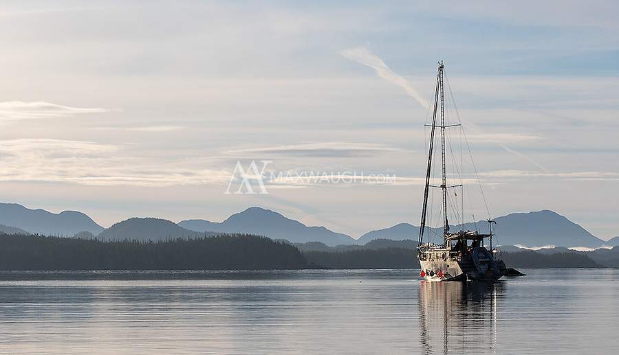 A sailing yacht navigates the coastal waters of the Great Bear Rainforest.