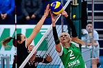 03.12.2017, Halle Berg Fidel, Muenster<br />Volleyball, Bundesliga Frauen, Normalrunde, USC MŸnster / Muenster vs. Rote Raben Vilsbiburg<br /><br />Block Jennifer Pettke (#15 Vilsbiburg) - Zuspiel Mareike Hindriksen (#2 Muenster)<br /><br />  Foto &copy; nordphoto / Kurth