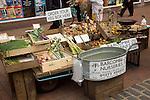 Barcombe Nurseries organic vegetable stall Lewes, East Sussex, England