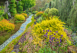 Vashon-Maury Island, WA: Perennial garden of tile artist Clare Dohna featuring moasic tile and a serpentine walkway