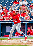 26 February 2019: St. Louis Cardinals catcher Francisco Pena at bat during a Spring Training game against the Washington Nationals at the Ballpark of the Palm Beaches in West Palm Beach, Florida. The Cardinals defeated the Nationals 6-1 in Grapefruit League play. Mandatory Credit: Ed Wolfstein Photo *** RAW (NEF) Image File Available ***