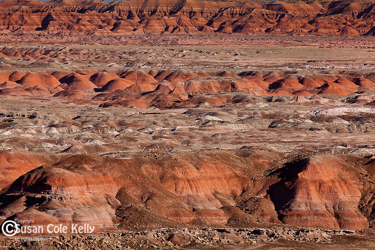 The badlands of the Painted Desert in Petrified Forest National Park, AZ, USA