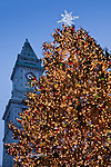 The Customs House tower and the Christmas tree at Quincy Market, Faneuil Hall Marketplace, Boston, MA