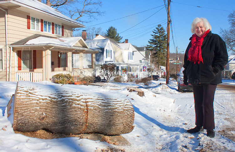 WATERBURY CT- JANUARY 29 2014 012914DA04-  Gail Girch of Waterbury looks over an area were trees were cut down by CL&amp;P on Windsor Street Wedesday. To some its concerning, while others say it needed to be done.<br /> Darlene Douty Republican American