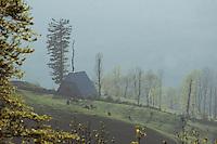 Europe/France/Auvergne/15/Cantal/Parc Naturel Régional des Volcans/Vallée de Mandailles: Buron