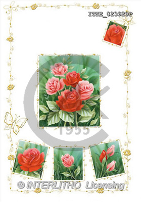 Isabella, FLOWERS, paintings(ITKE023929,#F#) Blumen, flores, illustrations, pinturas ,everyday