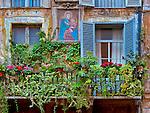 colorful windows in Campo de Fiori