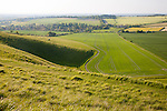 Summer view of arable fields and chalk landscape from Cherhill Down escarpment, Wiltshire, England, UK