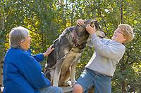 Tourists enjoy Alaska sled dog at Mary Shields Tails of the Trail, Fairbanks, Alaska