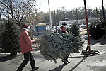 November 28, 2008. Durham, NC.. At the TROSA women's only Christmas tree lot, recovering addicts carry a tree to the sales lot. All the trees come from North Carolina and their sale is one of the biggest money makers for TROSA..TROSA, Triangle Residential Options for Substance Abusers, provides shelter and food for addicts that want to beat their addictions..
