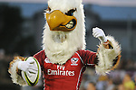 August 13, 2011:   USA Eagle's mascot during the Pre World Cup test match between Canada and USA's national teams at Infinity Park, Glendale, Colorado.  Canada defeated USA 27-7.     .. ...
