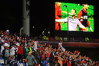 Serbia fans bask in the glory after winning the FIFA Under-20 Football World Cup Final between Brazil (gold) and Serbia at North Harbour Stadium, Albany, New Zealand on Saturday, 20 June 2015. Photo: Dave Lintott / lintottphoto.co.nz