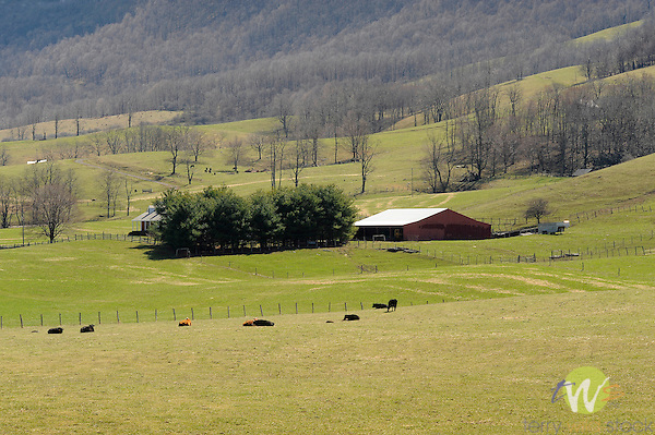 Scenic route 42, Craig County, VA with barn and hillsides. Early Spring.