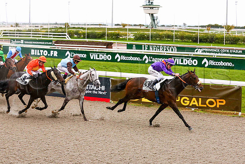 27.02.2016. Cagnes sur Mer, France. 3rd Race of the day Prix Jacques Bouchara. As the horses come to the line, 3 TARATCHI,(winner) A. HAMELIN<br /> 7 RAKHSH,(2nd) A. BADEL<br /> 18 MALANDRINO,(3rd) R. THOMAS