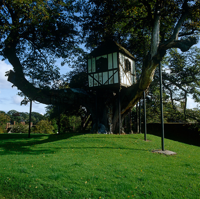 In the grounds of Pitchford Hall, an Elizabethan house in Shropshire, a 17th century tree-house is situated in an ancient tree which itself is supported by metal posts