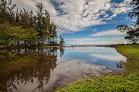 Clouds, blue sky and trees are reflected in the glassy surface of the Waipi'o Valley River, Hamakua Coast, Big Island of Hawai'i.