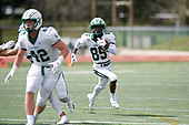 Jacksonville Dolphins vs Dartmouth Big Green September 21, 2019 at D.B. Milne Field in Jacksonville, Florida.  Dartmouth defeated Jacksonville 35-6.  (Mike Janes Photography)