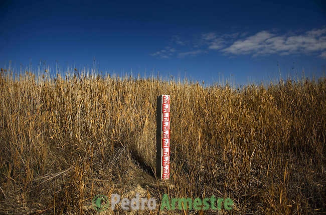 View of a level meter in a dried field in the national park of Las Tablas de Daimiel, in Ciudad Real on November 16, 2009. The European Union launched an investigation into Spanish wetland that has turned bone dry through mismanagement of water resources  from areas where fish once swam. The EU wants the Spanish government to explain how it plans to save Las Tablas de Daimiel National Park.The park, one of Spain's few wetlands, is classified as a UNESCO biosphere site and an EU-protected area because of its birdlife. But it has been drying up for decades, largely because of wells dug by farmers on the edges of the park to tap an aquifer that feeds the wetland's lagoons. Many of the wells are illegal. Environmentalists call this case a particularly glaring example of how a natural resource can be abused. (c)Pedro ARMESTRE