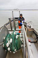 Commercial fisherman Bill Webber gill net fishes for sockeye and king salmon on the Copper River flats, near Cordova, Alaska.