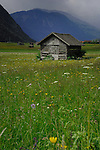 Cattle shelters in spring meadow with the background of mountains. Imst district, Austria