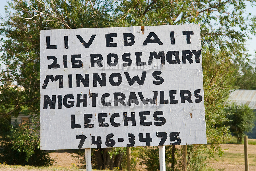 Handmade sign for fisherman: live bait, minnows, nightcrawlers, leeches, Nashua, Mont.