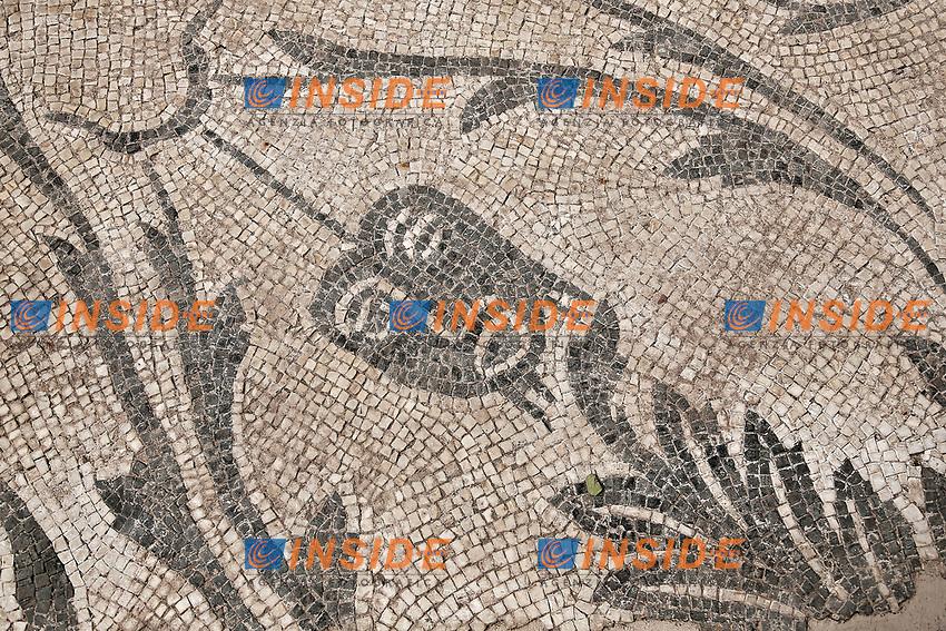 Roma 07/07/2017. Presentazione di &ldquo;Le domus dei cortigiani imperiali di Santa Croce in Gerusalemme nuovi ritrovamenti archeologici e restauri&rdquo;.<br /> Rome July 7th 2017. Presentation of 'The houses of imperial courtiers of Santa Croce in Gerusalemme, new finds and restoration'.<br /> Foto Samantha Zucchi Insidefoto