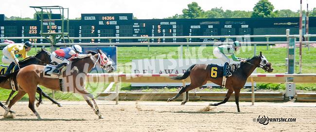 Greedy Daughter winning at Delaware Park on 8/24/2013