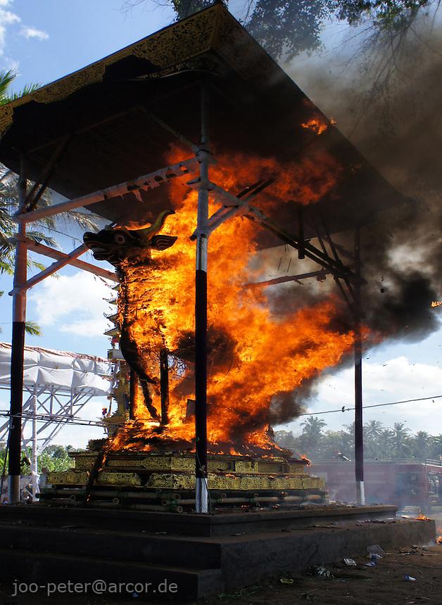 bull sarcophagus burning during cremation ceremonies of  higher cast brahman family member, puri agung sayan Oka Willy S, village Sayan, Bali, archipelago Indonesia, 2010