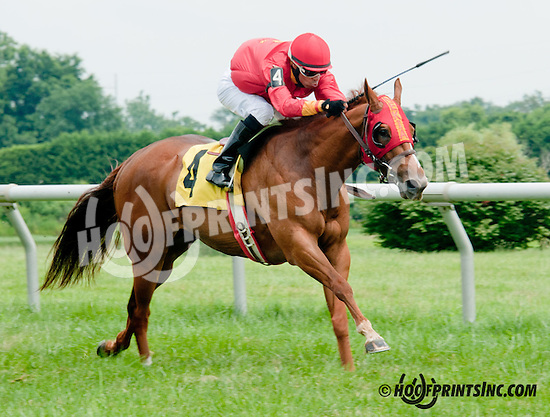Nekia's Vow winning at Delaware Park on 7/11/13