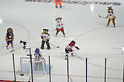 Mascots from around the league play some hockey before the start of the Honda SuperSkills competition at the RBC Center,1/29/2011.