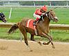 Hot Necker winning at Delaware Park on 10/4/12