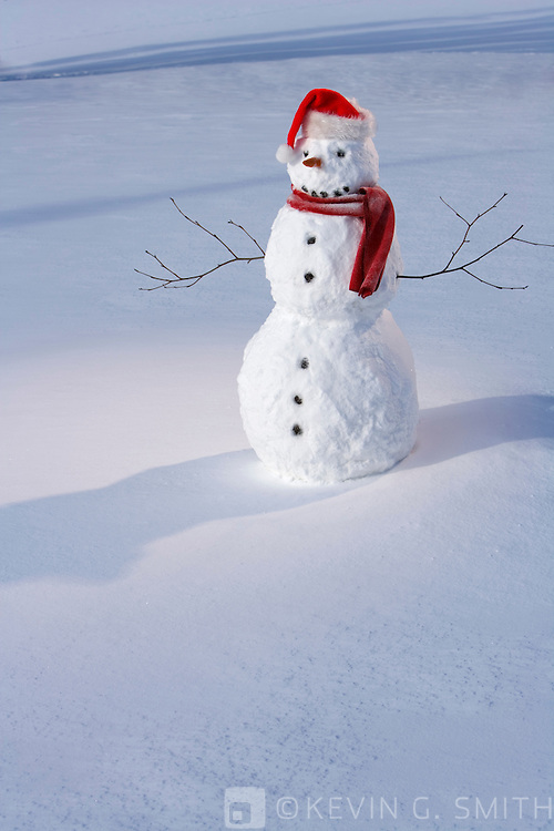 Snowman with red scarf and santa hat standing in snowy meadow.