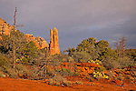 The Rabbit Ears, near Sedona, Arizona