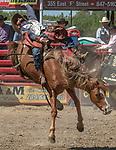 Bareback rider Mason Clements from Springville, Utah at the 68th annual Oakdale Saddle Club Rodeo on Sunday, April 14, 2019.  (Al Golub/Record Photo)