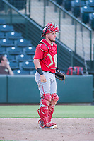 AZL Angels catcher Connor Fitzsimons (6) on defense during a game against the AZL Indians on August 7, 2017 at Tempe Diablo Stadium in Tempe, Arizona. AZL Indians defeated the AZL Angels 5-3. (Zachary Lucy/Four Seam Images)
