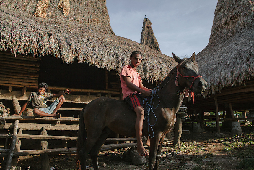 A local boy posed with his horse in front of traditional house of Wainyapu Village. This area famous for Pasola, a horseriding mock warfare.