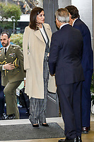 JAN 16 Queen Letizia attends a Working meeting in the Spanish Red Cross