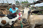 Photobombed by a goat! Chris Mbano raises goats in Kaluhoro, Malawi. With support from the Ekwendeni Hospital AIDS Program, she and other villagers here participate in a Building Sustainable Livelihoods program, working together to earn and save money, raise more nutritious food, receive vocational training, and better prepare young children for school. She bought her initial goats with financial assistance from a program-supported savings group which she belongs to.