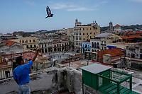 HAVANA, CUBA - JUNE 16: Cuban pigeon breeder Alberto Gutierrez, releases a pigeon on a rooftop in Old Havana, Habana Vieja on June 16, 2015 in Havana, Cuba. <br /> Daniel Berehulak for Panasonic/Lumix